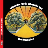 The Dramatics - Whatcha See Is Whatcha Get [Stax Remasters]