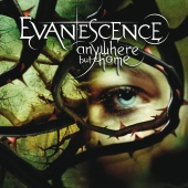 Evanescence - Anywhere But Home [Live]