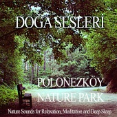Doğa Sesleri - Polonezkoy Nature Park - Nature Sounds for Relaxation ,Meditation and Deep Sleep