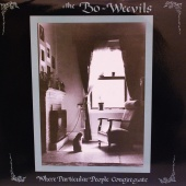 The Bo-Weevils - Where Particular People Congregate