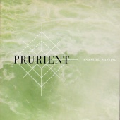 Prurient - And Still, Wanting