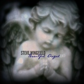 Steve Wingfield - Beautiful Angel