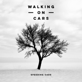 Walking On Cars - Speeding Cars (Acoustic Version)