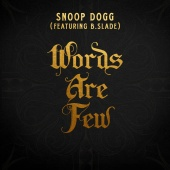 Snoop Dogg - Words Are Few (feat. B Slade)