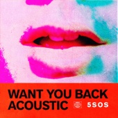 5 Seconds Of Summer - Want You Back (Acoustic)