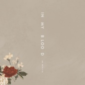 Shawn Mendes - In My Blood (Acoustic)