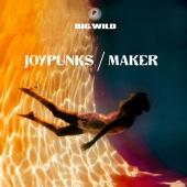 Big Wild - Joypunks / Maker