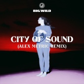 Big Wild - City of Sound Alex Metric Remix