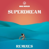 Big Wild - Superdream Remixes