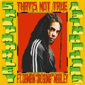 Skip Marley - That's Not True (feat. Damian