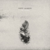 Poppy Ackroyd - The Birds