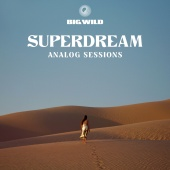 Big Wild - No Words Analog Sessions