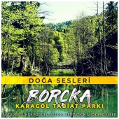 Doğa Sesleri - Borçka Karagöl Tabiat Parkı (Nature Sounds for Relaxation, Meditation and Deep Sleep)
