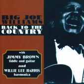Big Joe Williams - Back To The Country