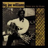 Big Joe Williams - These Are My Blues