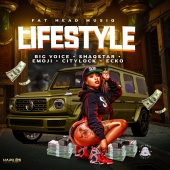 Various Artists - Lifestyle
