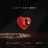 Josh Bogert & Laust & Um41k - Can't Say Why