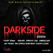 Various Artists - Darkside Riddim